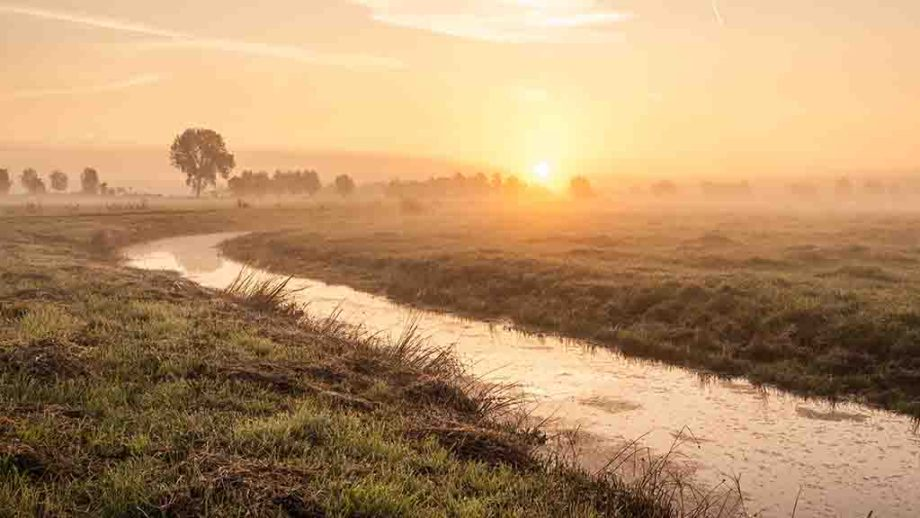 A traditional Dutch polder landscape at sunrise with a small river, trees and meadows