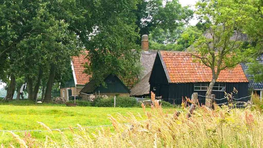 Typical Wieringen farm houses on the previous Dutch island of Wieringen in The Netherlands