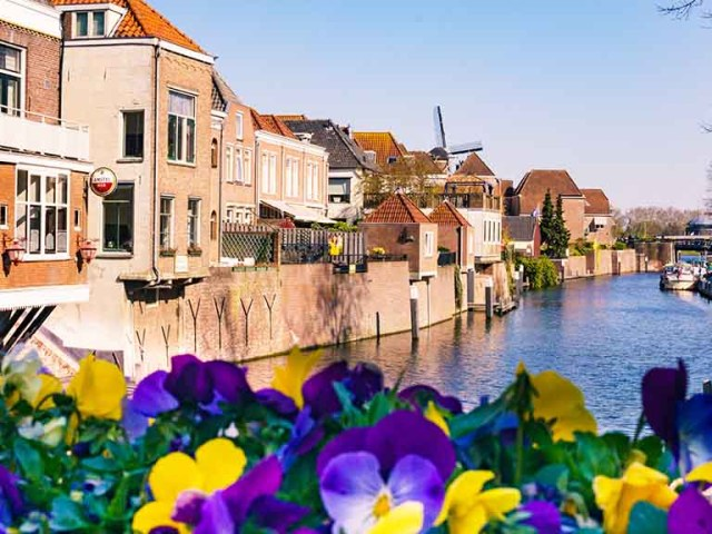 flowers in front of a canal in the dutch town of Gorinchem, The Netherlands