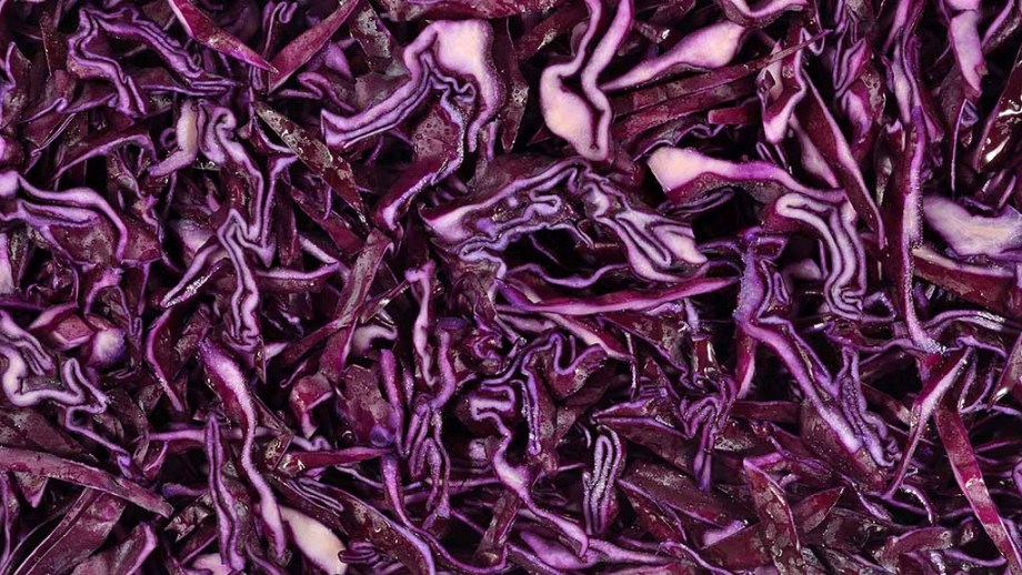 Sliced red cabbage as background texture
