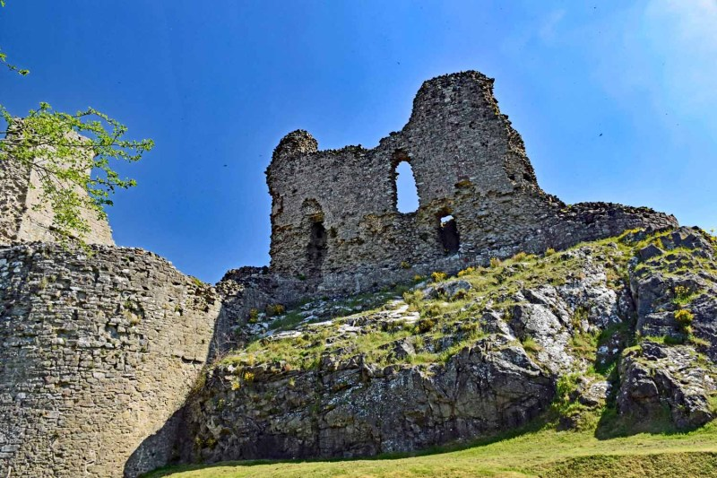 looking up at Montgomery Castle