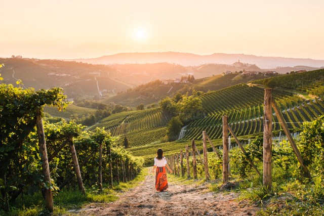 14 #Piemontestories: women and men of Langhe-Roero and Monferrato with the Virtual  Tour project   VisitPiemonte