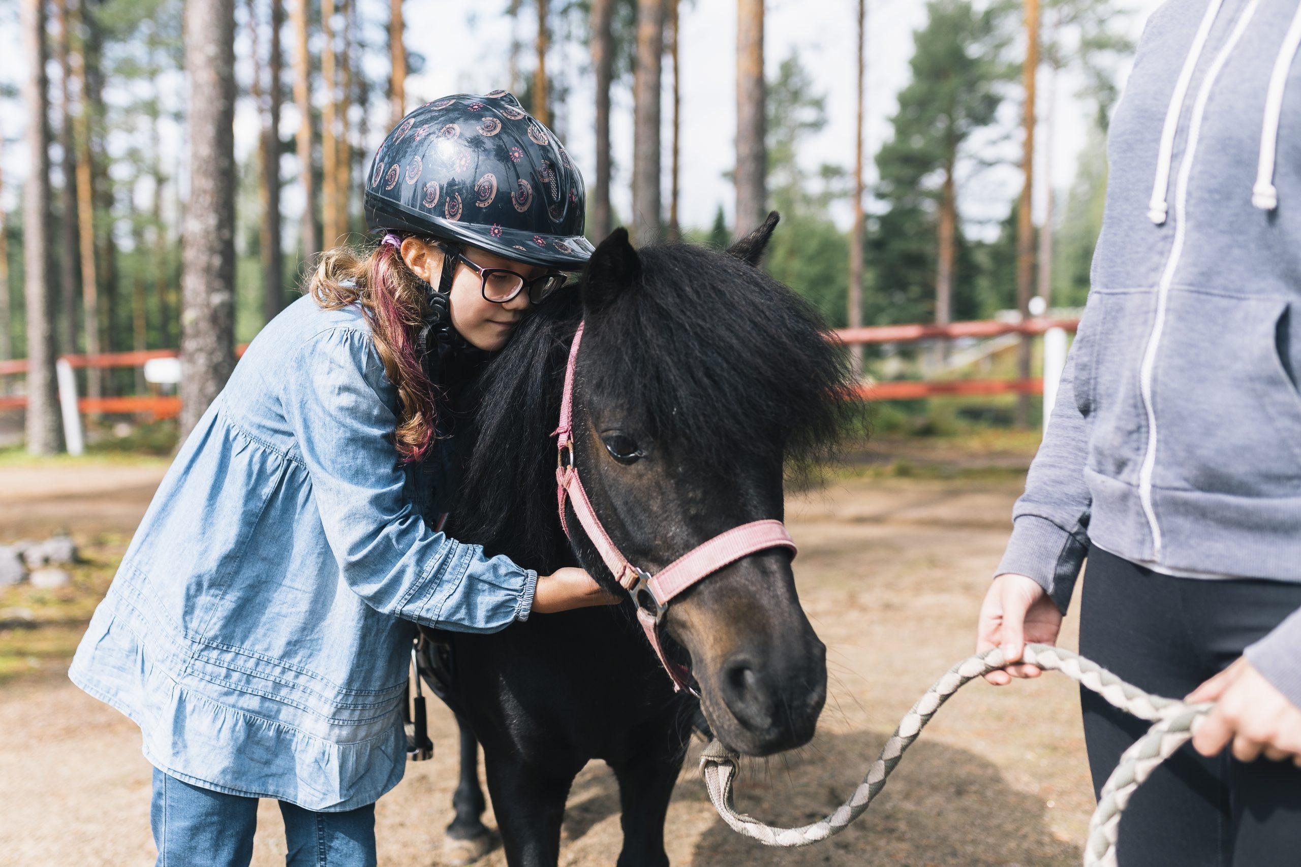 Puuhapuisto Veijari Saarijärvi
