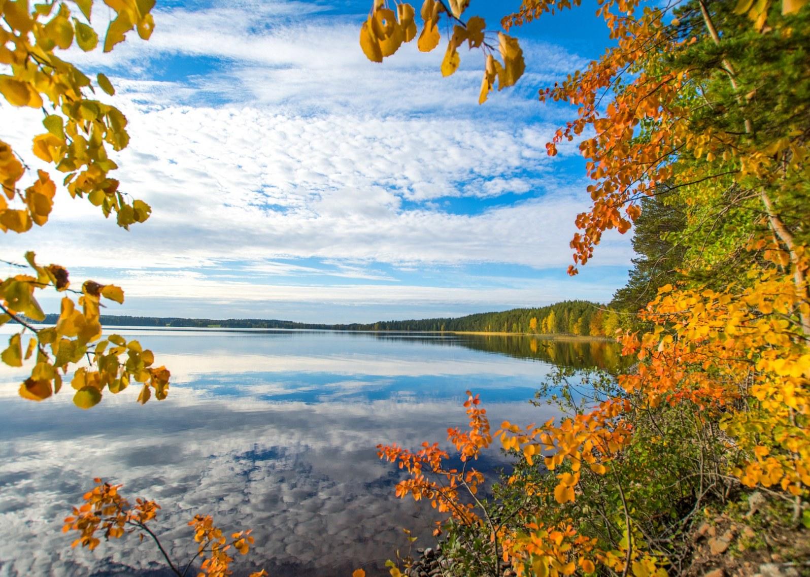Syyskuu 2020 Haikankärki Saarijärvi