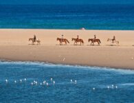 Chia Laguna_HORSE RIDING