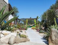 Su Gologone 33 Cactus Garden