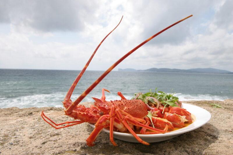 Visit Sardinia VIP | Alghero Seafood Experience