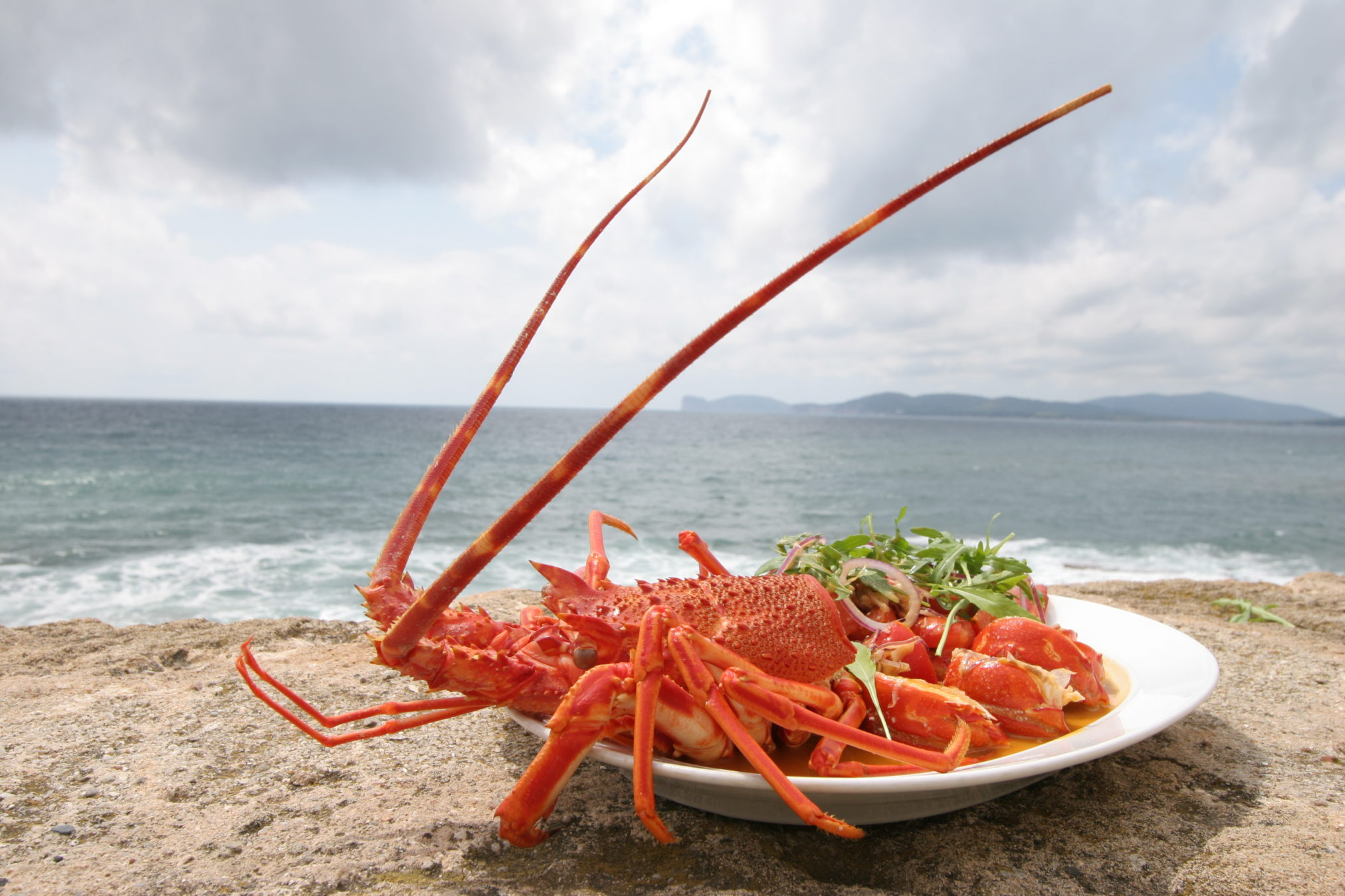 Best Food and wine tours italy, Alghero Seafood Experience
