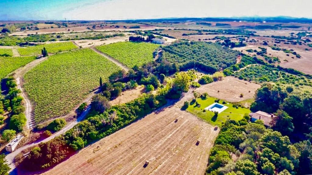 ", Food & Wine Tour ""Visit Sardinia VIP"" Mediterranean Spring Flavors"