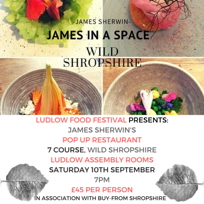 James in a Space - Wild Shropshire