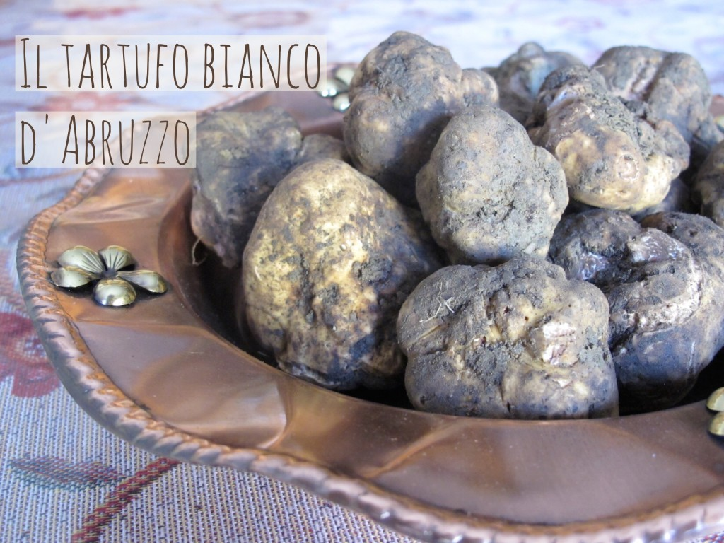 Il tartufo bianco d'Abruzzo