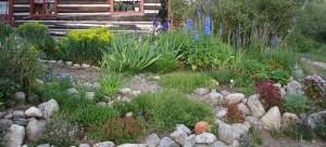 High altitude garden in Twin Lakes