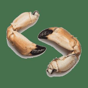 Krabscharen kopen