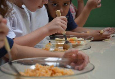 Secretaria de Educação abre 98 novas vagas para creches em Camboriú