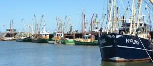 Bemanningszaken-aan-boord in Den Oever
