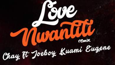 Photo of [Instrumentals] CKay – Love Nwantinti