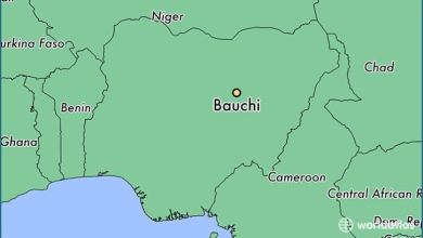 Photo of [News] Bauchi – Over 300 Citizen Died Within 2 Weeks