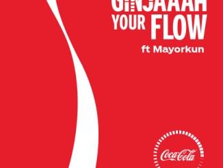 Ginjaaah Your Flow - Mayorkun