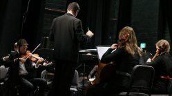 orchestra6