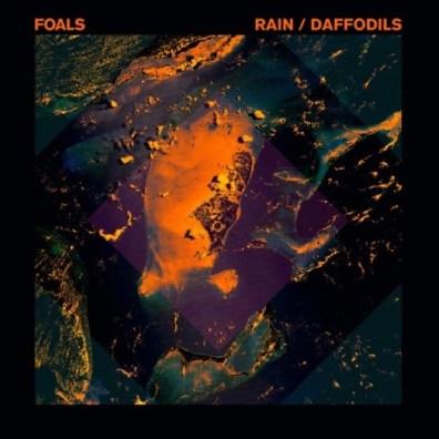 Foals Rain Daffodils