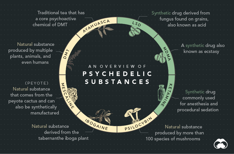 history of psychedelics supplemental