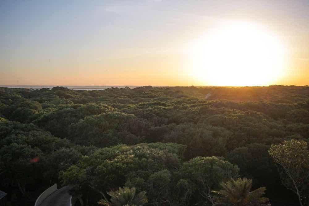 Inclusive Plantation All Island Amelia