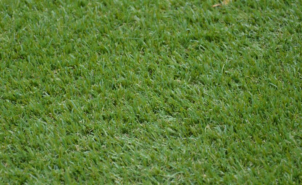 Burnside Artificial Grass | Artificial Grass Adelaide