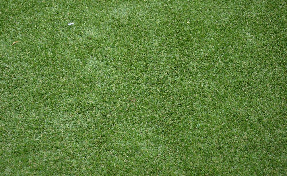 Manicured Artificial Grass | Artificial Grass Adelaide
