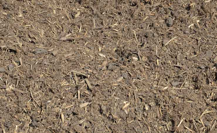 A good quality Mulch reduces evaporation