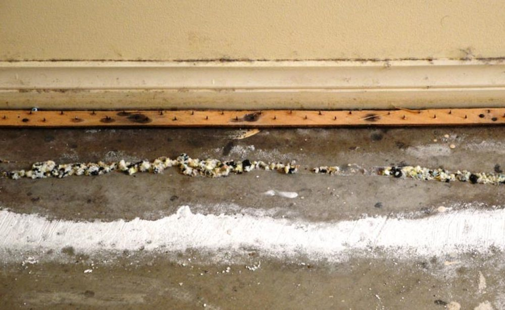 Salt Damp in Adelaide home