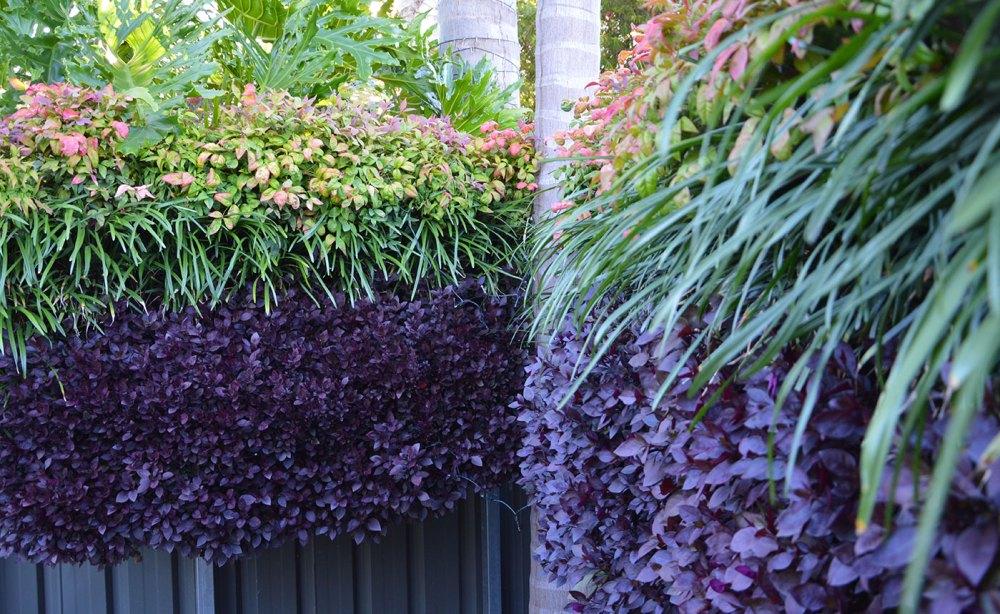 Vertical Gardens | Garden Features Adelaide