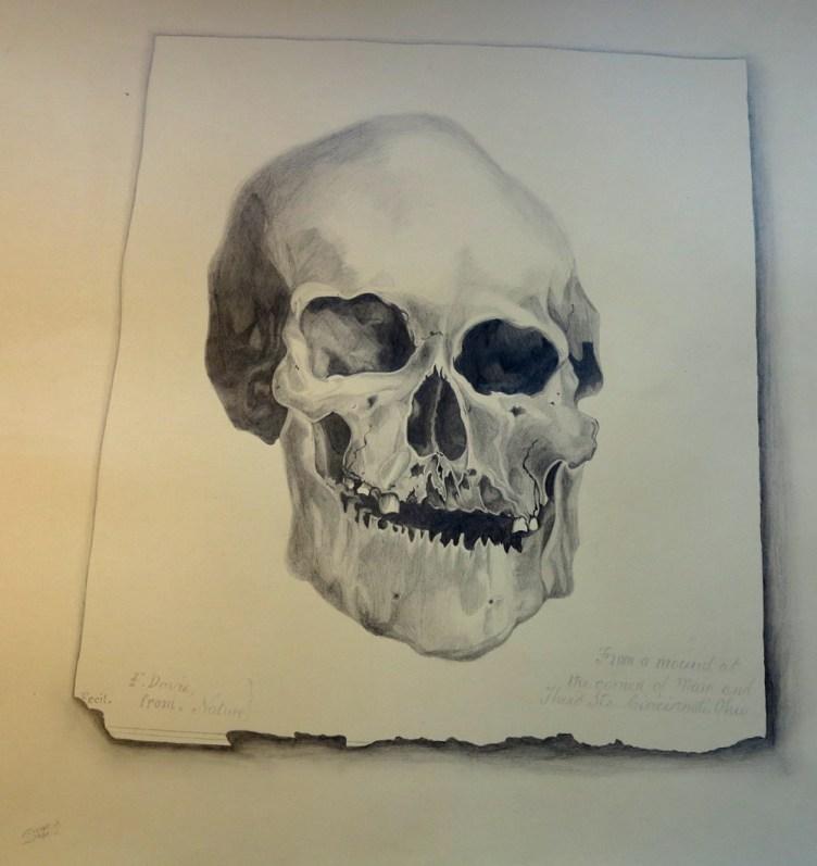 human skull, pencil 2h, hb, 2b, 4b