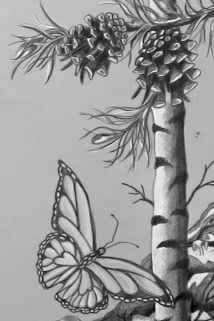birch tree, butterfly, pine cones