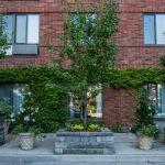Visviva gardens, gardening toronto, planters, design, landscaping