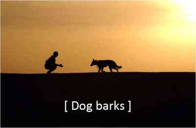 dog barks, sunset, closed captions