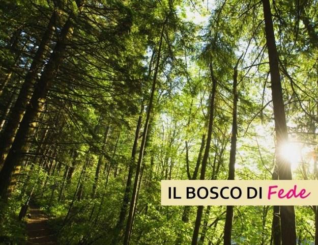 Bosco di Fede