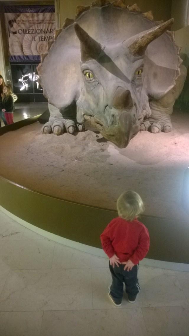 The Second vs Triceratopo