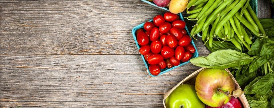 Ernährungs-Programm
