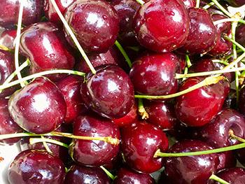 apothe-cherry