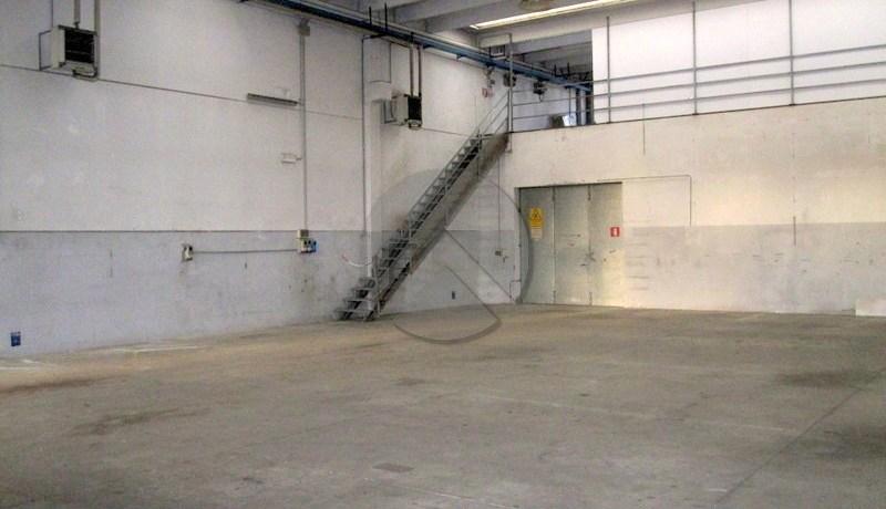 7057-affitto-cesena-torredelmoro-capannone_-001