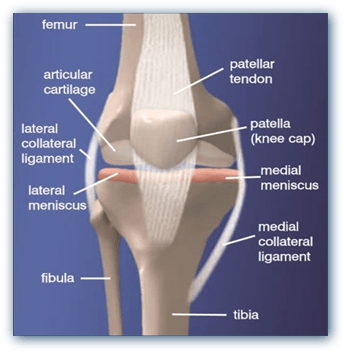 Knee Treatment - Prolotherapy