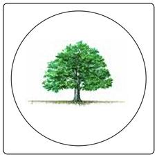 Four Principles Logo