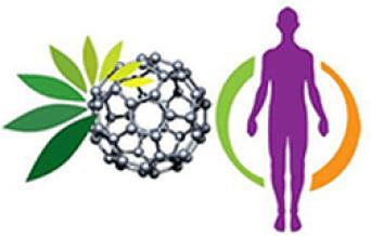 C60 Charcoal fullerene