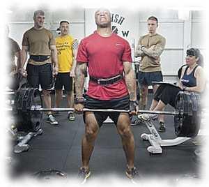 sarviapila testosteroni