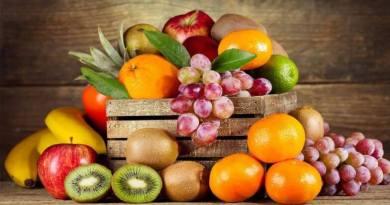 plodove 2021