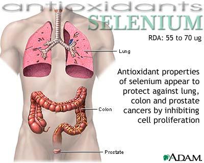 kelebihan selenium