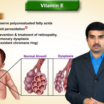 Vitamin E (Tocopherol) Biochemistry: Sources, Daily requirements, Functions, Deficiency and