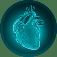 Vita Q10 como tomar do dr. rocha
