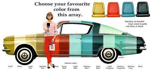 volete un passaggio in auto?