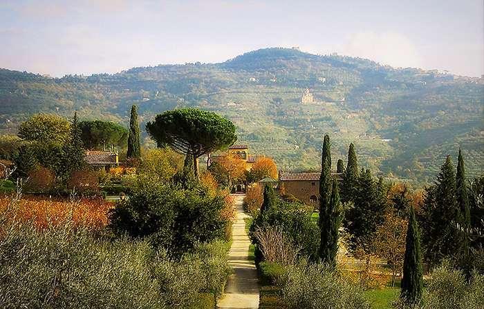 cosa fare e dove mangiare nella provincia di Arezzo